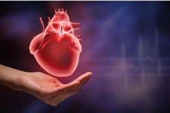 对于肾病患者来说,除了尿毒症,心血管疾病同样可怕!